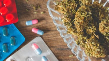 Marijuana buds in the glass plate on the wooden board and medications