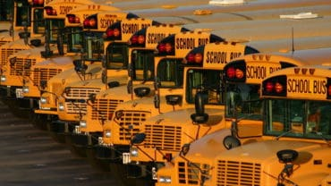 full school bus lot just after school let out for the summer